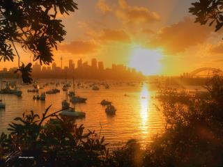 A nice panoramic view of Sydney Harbour on New Year's Eve in 2007.